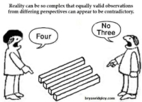 Reality can be so complex that equally valid observations from different perspectives can appear to be contradictory.