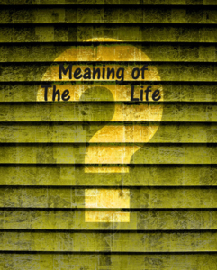 Meaning of Life Qmark2