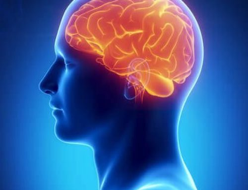 5 Factors to Boost your Brain Health